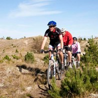saeby_mountainbike4_16-9.jpg